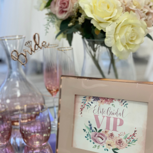 vip party bridal appointment